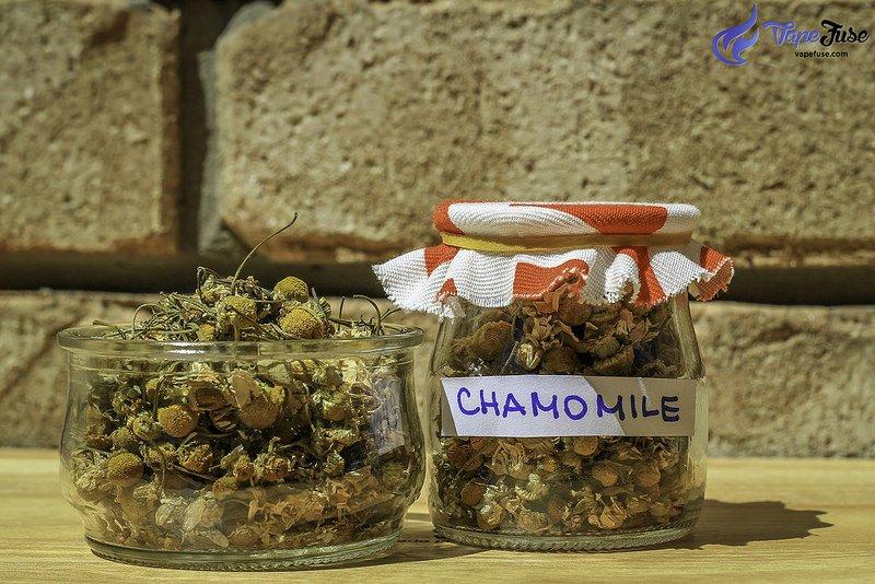 chamomile-herb