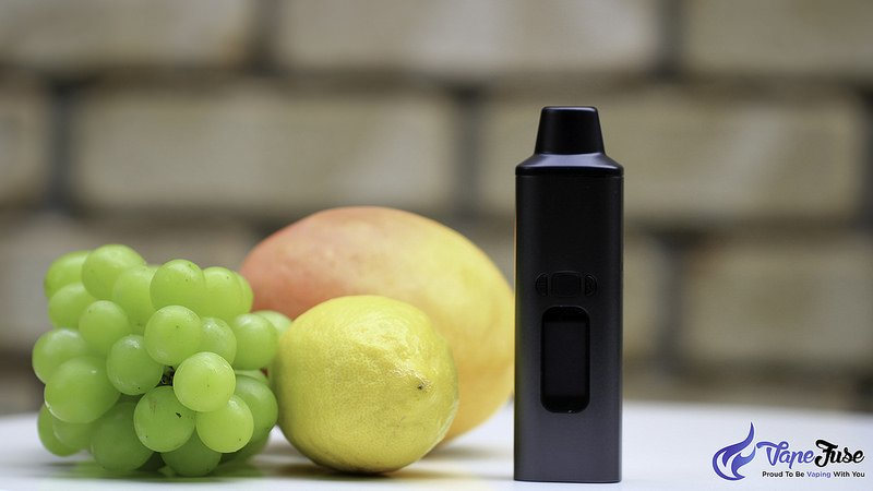 WOW Portable Vaporizer black with fruits