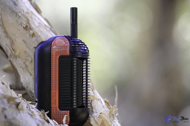 Iolite Original Portable Vape in nature