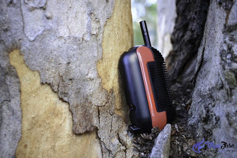 Iolite Original Portable Vape on a tree